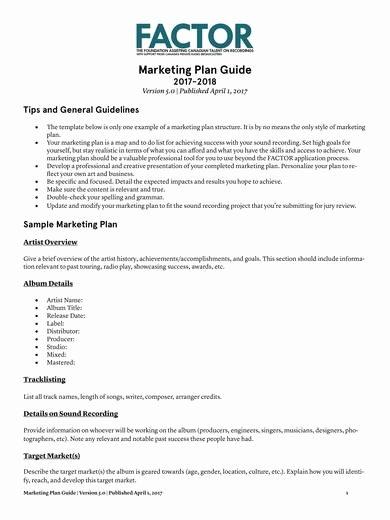 Music Marketing Plan Template Beautiful 10 Music Marketing Plan Template Pdf Word
