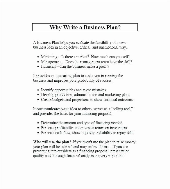 Music Marketing Plan Template Fresh Internal Marketing Plan Template Music Business Plan