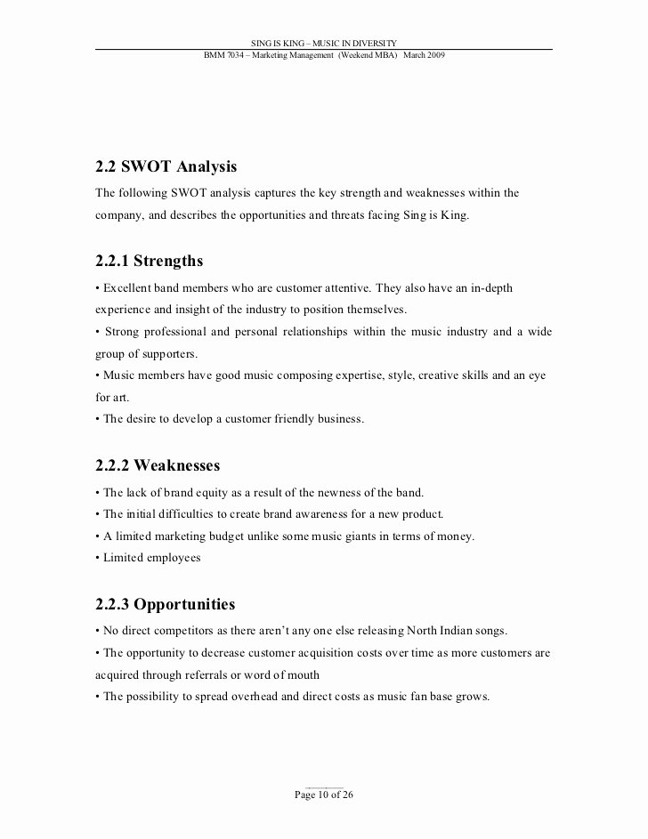 Music Marketing Plan Template Lovely Sample Marketing Plan Music Industry