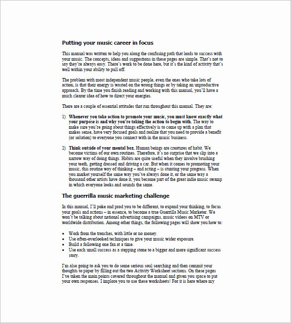 Music Marketing Plan Template Unique 14 Music Marketing Plan Templates Doc Pdf