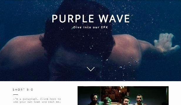 Music Press Release Template Fresh Template Musician Bio Page Example Music Artist Press