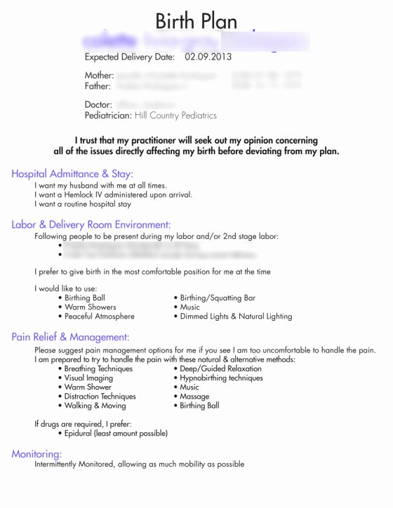Natural Birth Plan Template Awesome Our Birth Plan Birth Plan Templates Examples