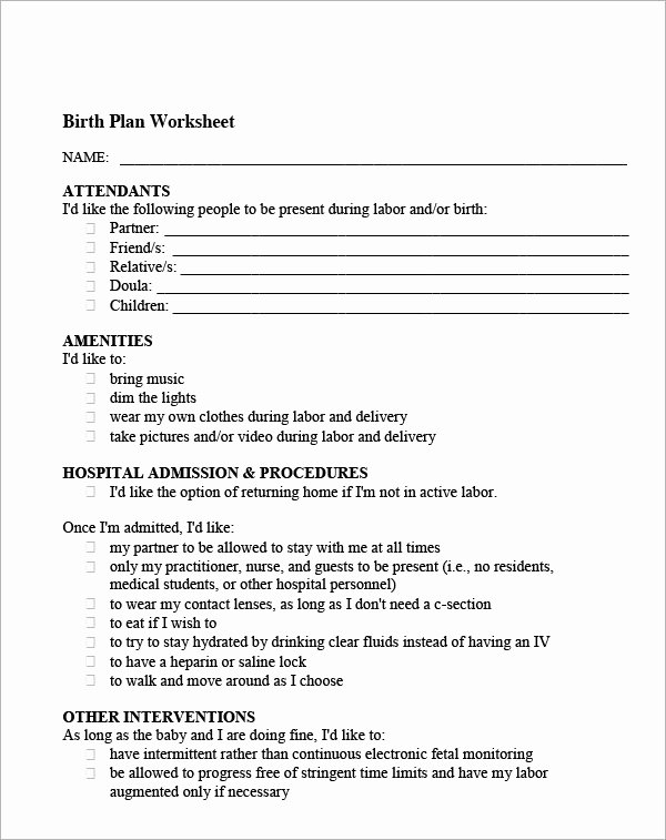 Natural Birth Plan Template Elegant 22 Sample Birth Plan Templates – Pdf Word Apple Pages