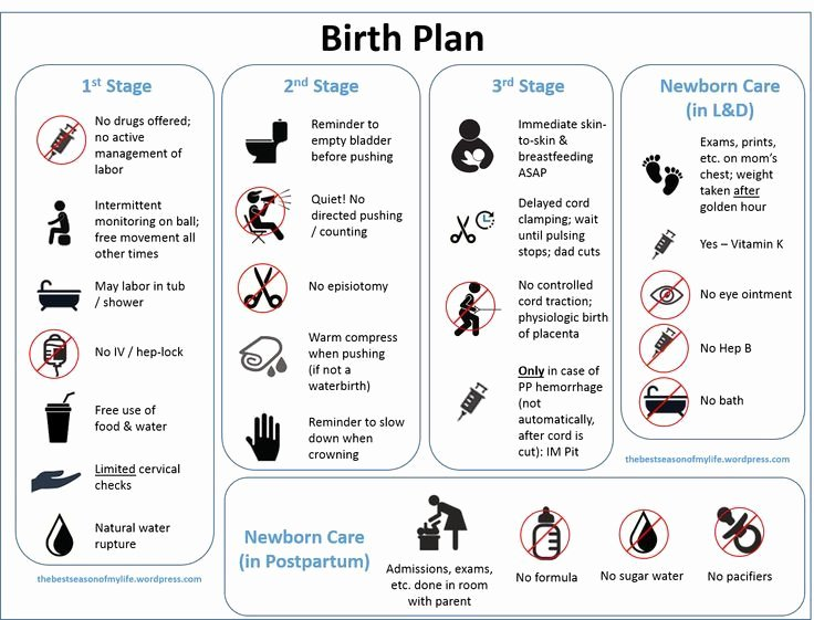 Natural Birth Plan Template New 17 Best Images About Birth or It S Really Not the Stork