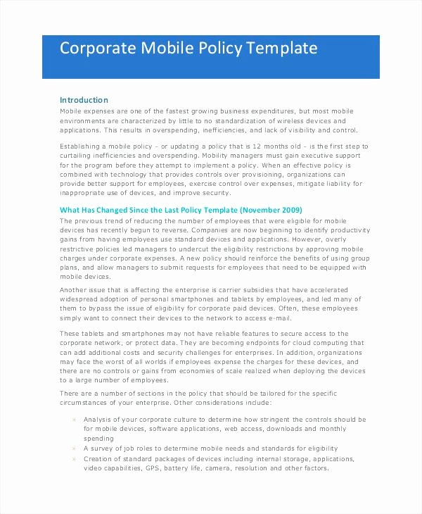 Network Security Policy Template Luxury Network Security Policy Sample Pany Template Data