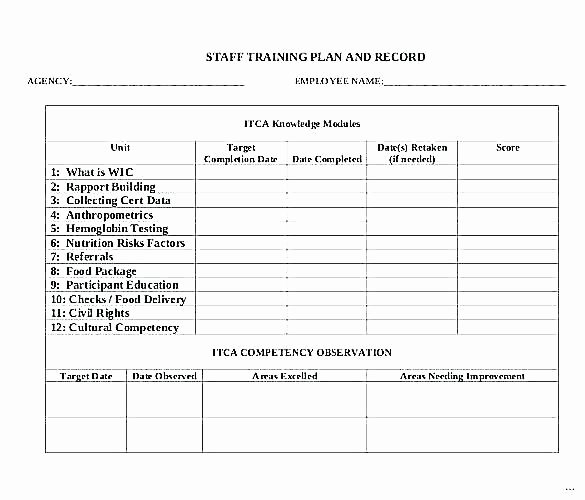 New Employee Training Plan Template Unique Training Program Sample Template – Thalmus