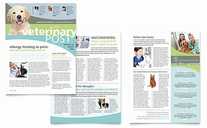 Newsletter Template for Word Luxury Vet Clinic Newsletter Template Word & Publisher
