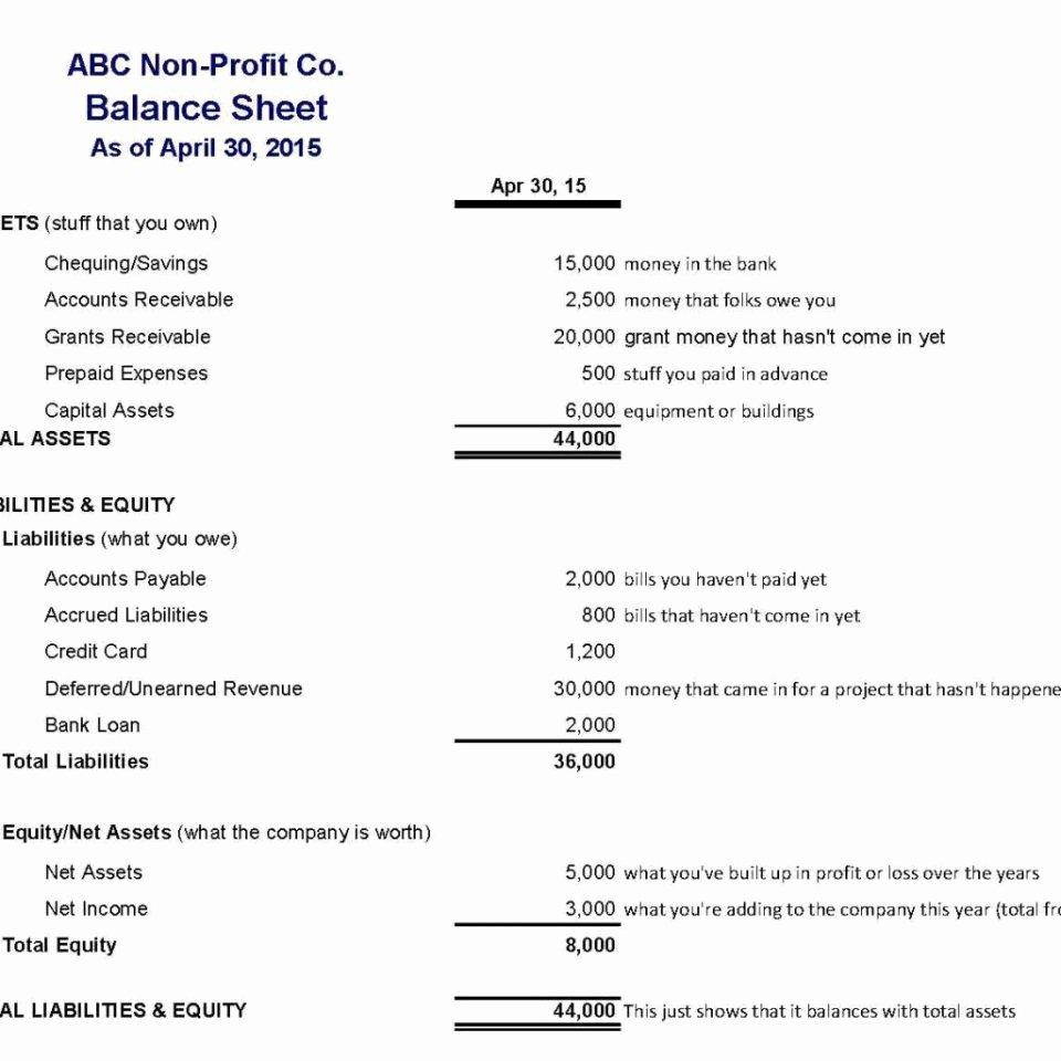 Non Profit Balance Sheet Template Beautiful Non Profit organization Balance Sheet Example Sample