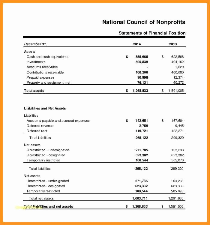 Non Profit Balance Sheet Template Best Of 9 10 Non Profit Balance Sheet Template