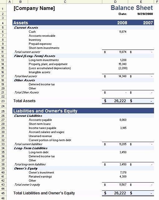 Non Profit Balance Sheet Template Fresh Non Profit Financial Statement Template Free 2016