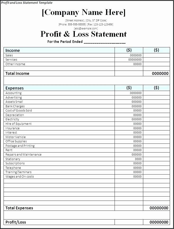 Non Profit Balance Sheet Template Inspirational Template Non Profit Balance Sheet Template