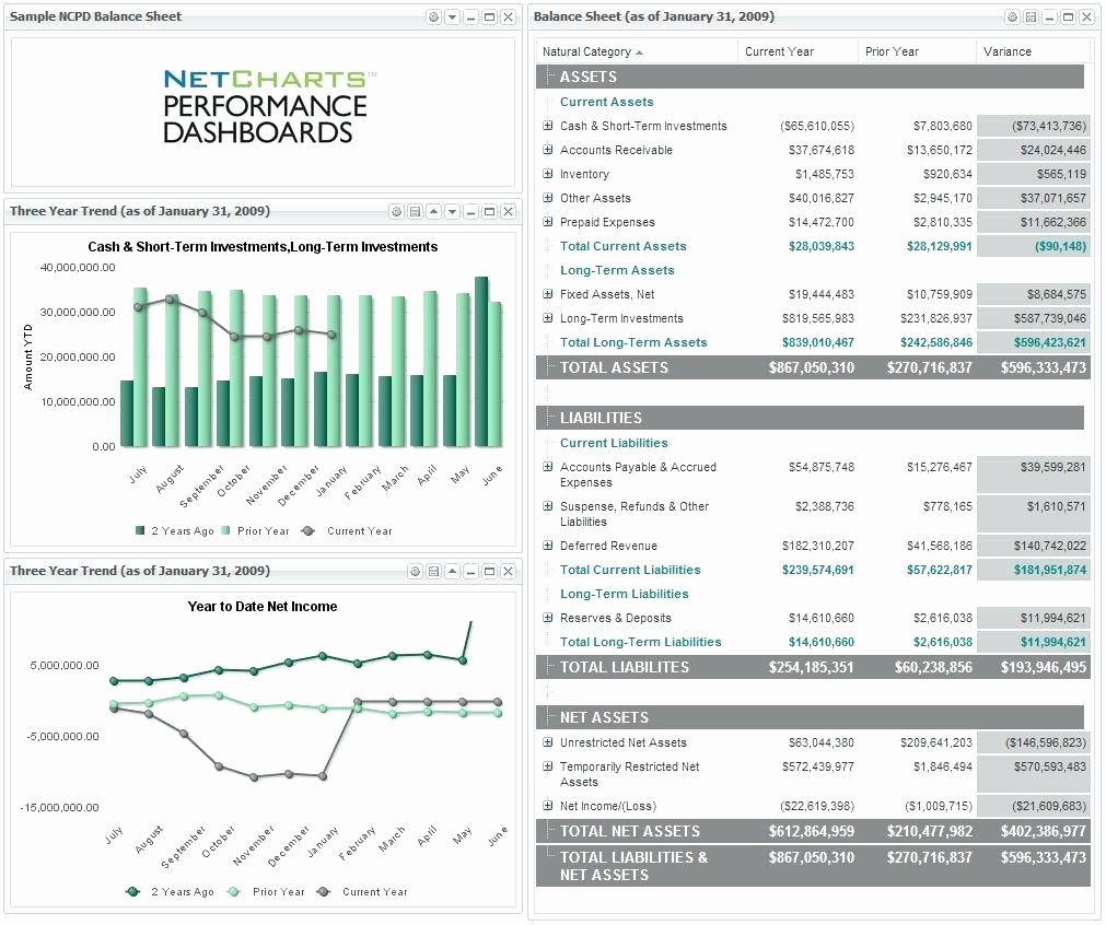 Non Profit Balance Sheet Template Lovely Balance Sheet for Non Profit Template