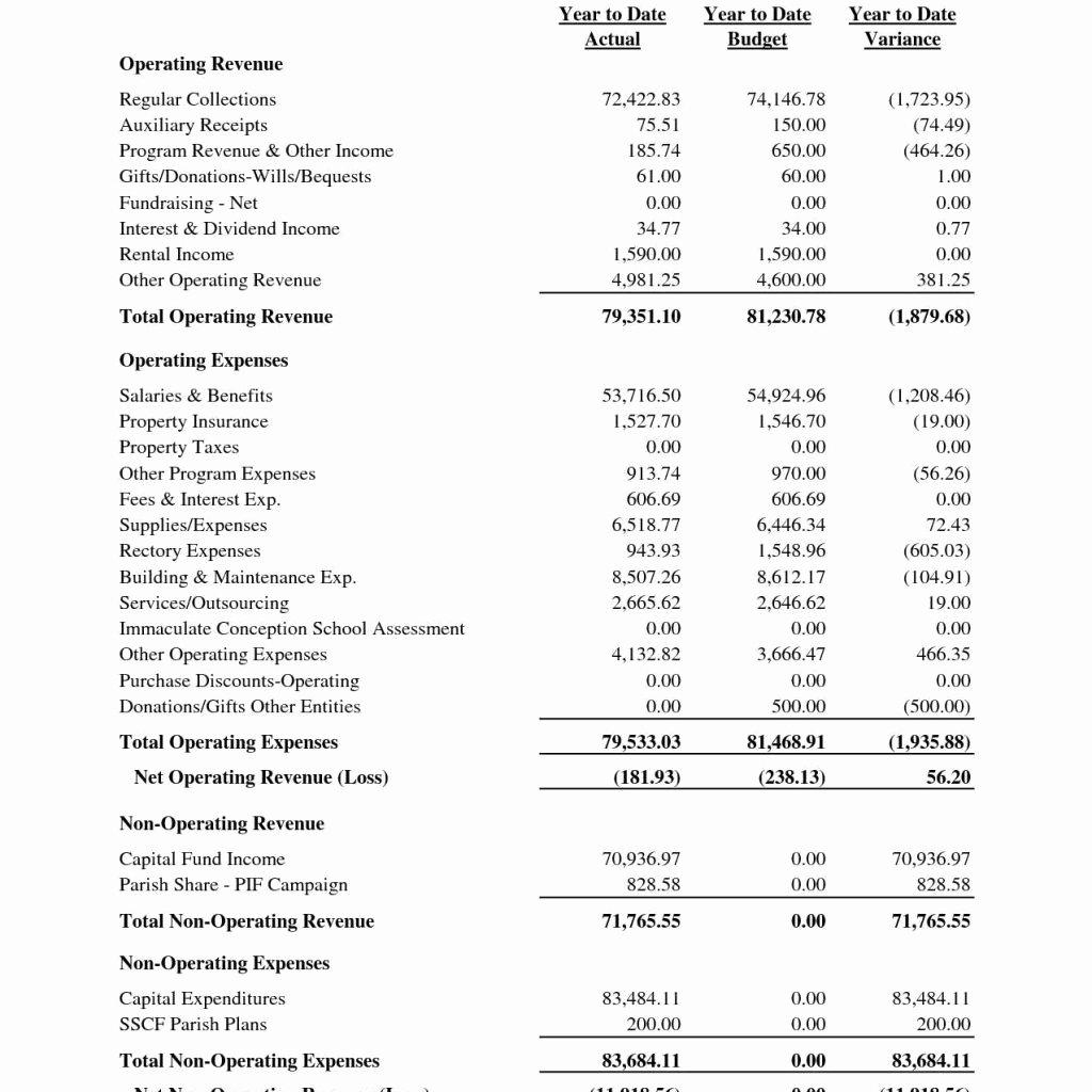 Non Profit Balance Sheet Template New Non Profit Balance Sheet Template and Sample Balance Sheet