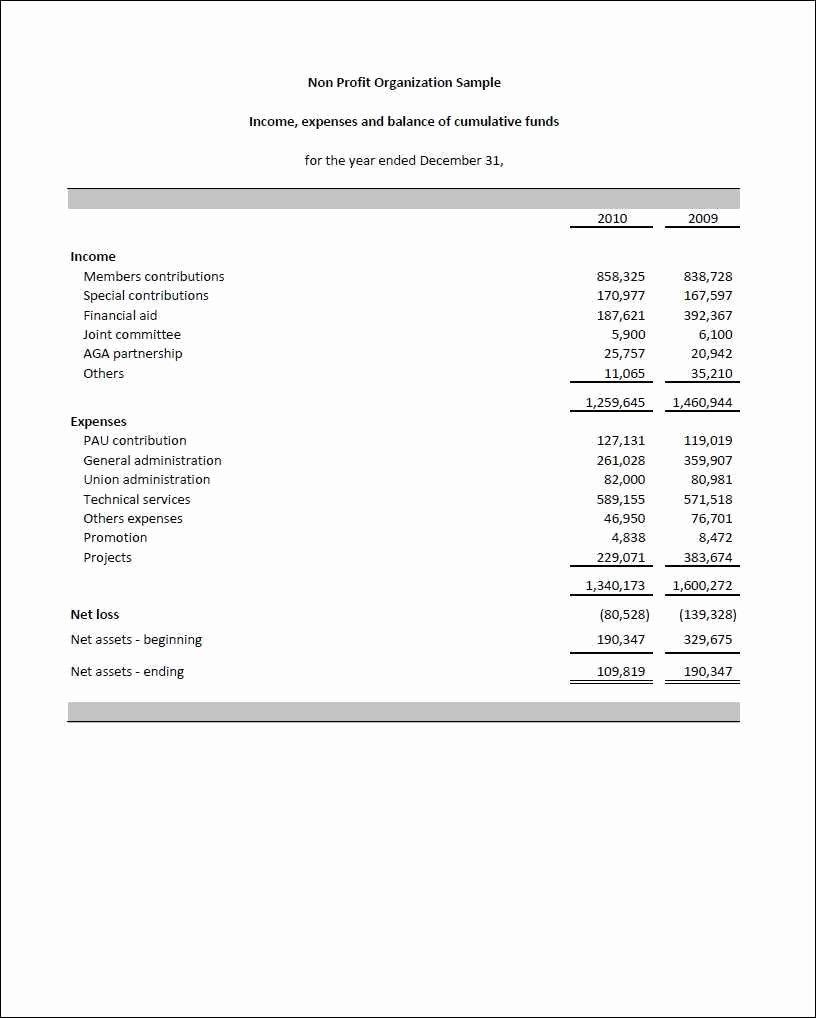 Non Profit Balance Sheet Template Unique Non Profit organization Balance Sheet Template Example