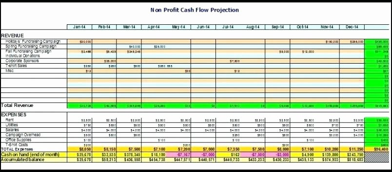 Non Profit Budget Template Excel Lovely Non Profit Bud Worksheet Non Profit Bud Spreadsheet