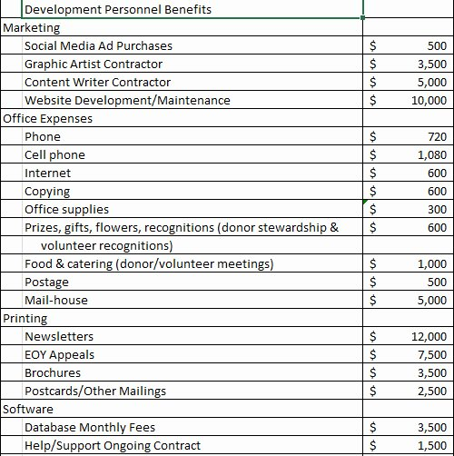 Non Profit Budget Template Excel New Non Profit Bud Template Excel