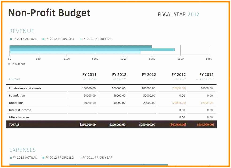 Non Profit Budget Template Excel Unique 6 Nonprofit Bud Template Excel Preuu