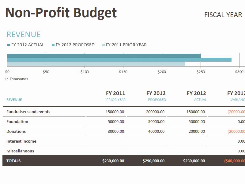 Non Profit Budget Template Unique Non Profit Excel Templates Keirindofo