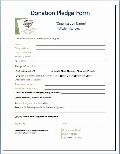 Non Profit Donation Card Template Awesome Sample Donation Pledge form