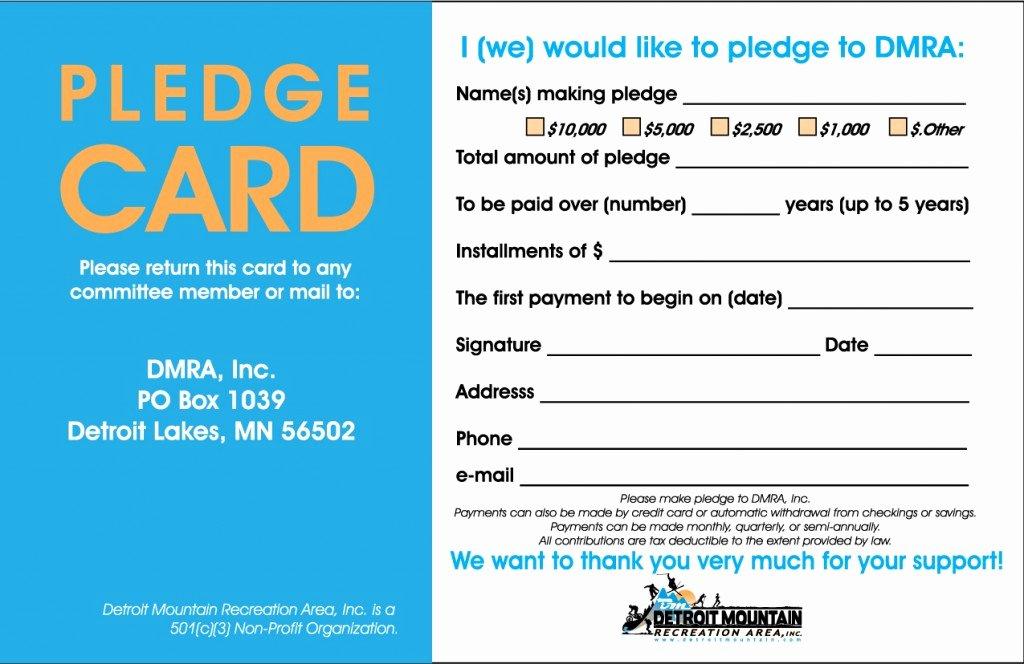 Non Profit Donation Card Template Inspirational Donate Detroit Mountain