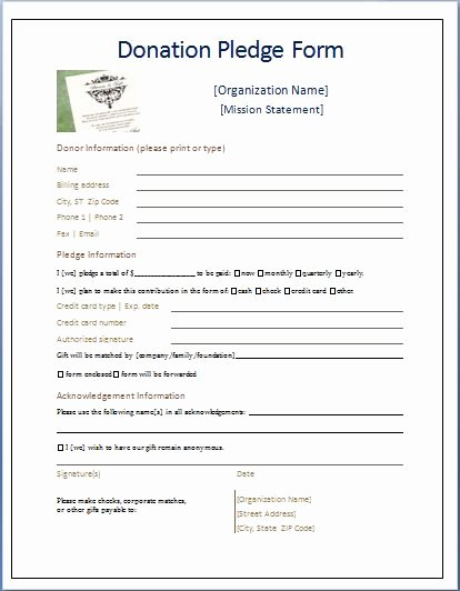 Non Profit Donation Card Template Unique Sample Donation Pledge form