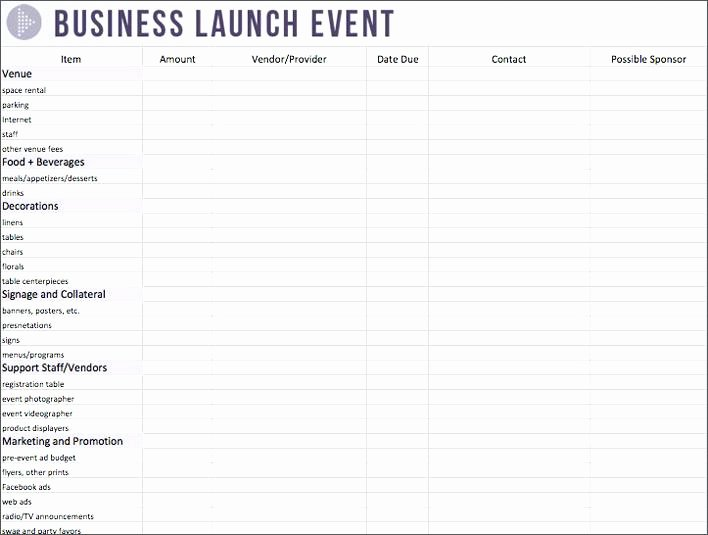 Non Profit event Planning Template Luxury Non Profit Bud Template event Planning Excel