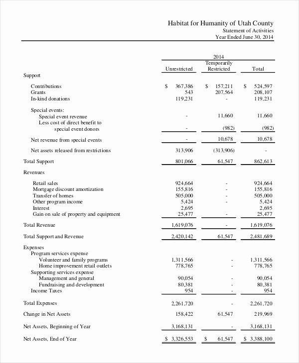 Non Profit Financial Statement Template Awesome Financial Statement 20 Free Sample Example format