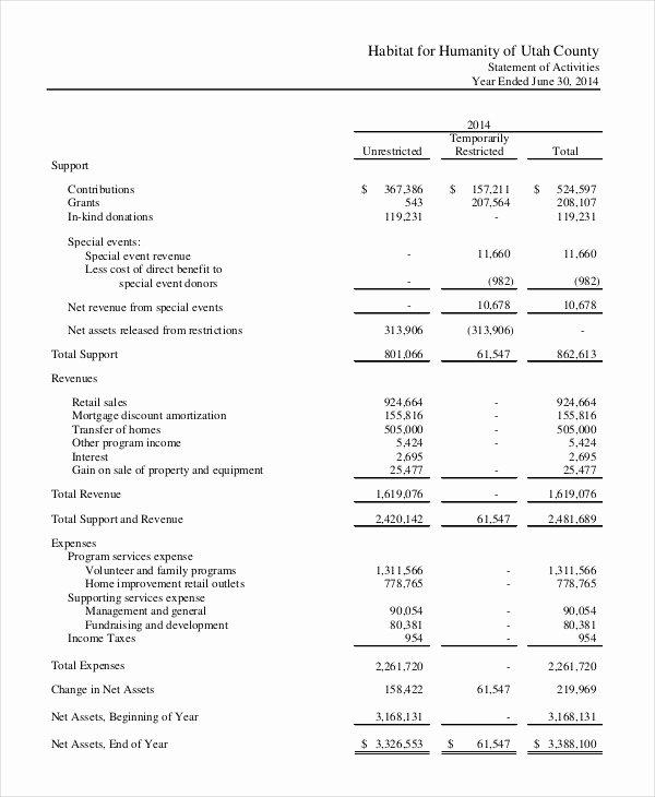 Non Profit Financial Statement Template Awesome Financial Statement 20 Free Sample Example format