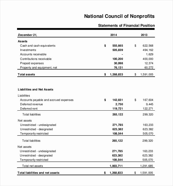 Non Profit Financial Statement Template Fresh 27 Financial Statement Templates Pdf Doc