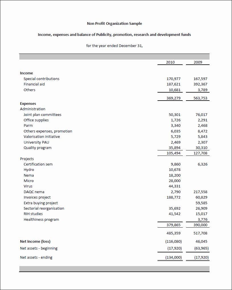 Non Profit Financial Statement Template Fresh Non Profit Financial Statement Sample Annual Report