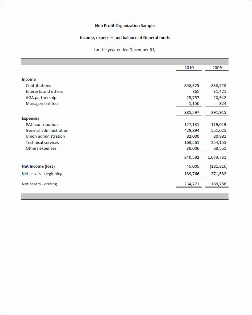 Non Profit Financial Statement Template Fresh Non Profit Financial Statement Template Excel Templates Data