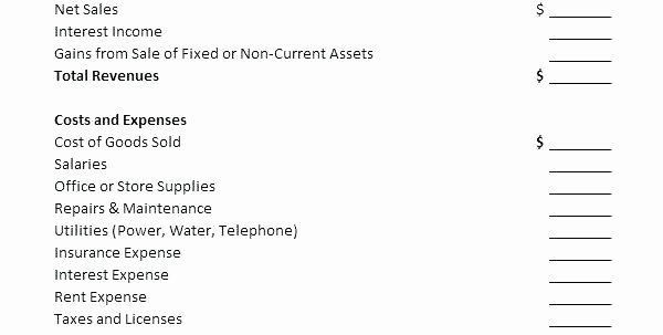 Non Profit Financial Statement Template Inspirational 92 Non Profit Financial Statement Template Free Non
