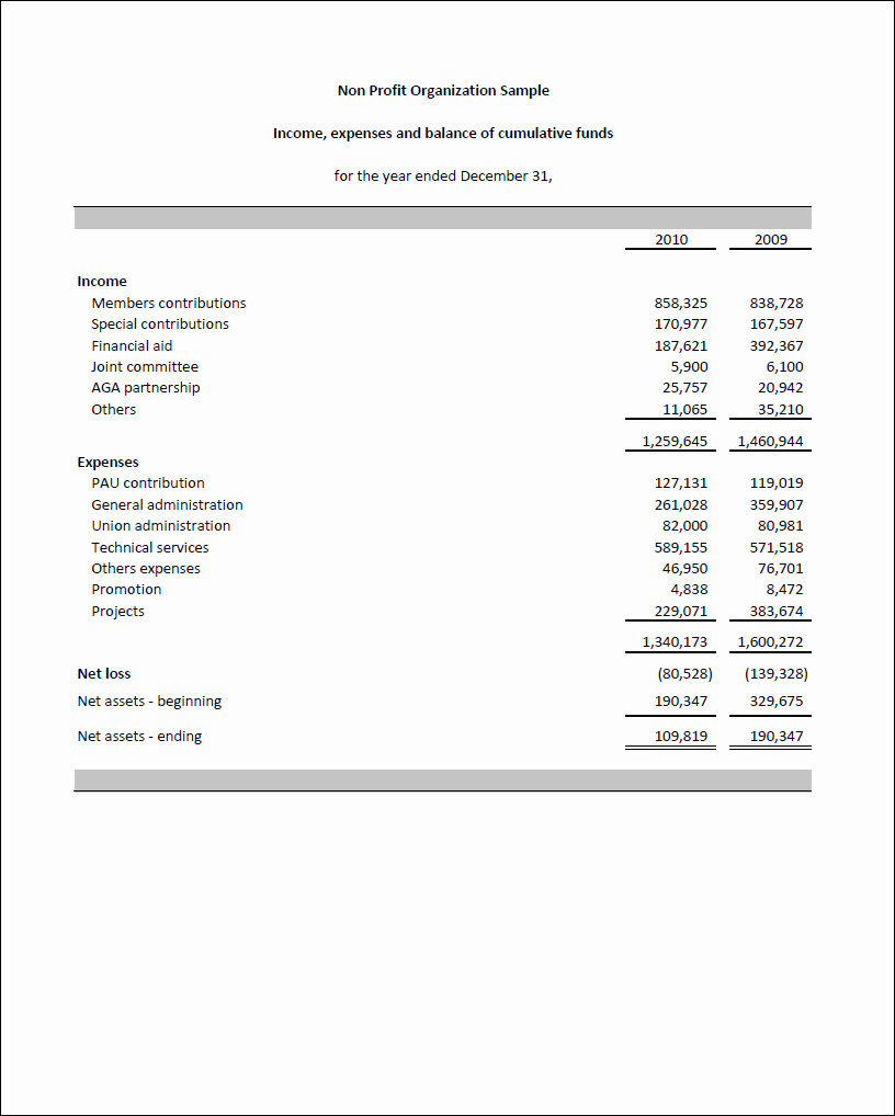 Non Profit Financial Statement Template Inspirational Non Profit Financial Statement Template Templates Data