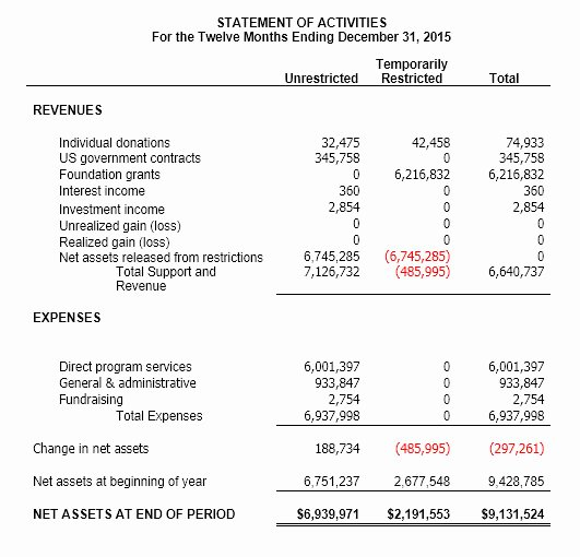 Non Profit Financial Statement Template Inspirational Non Profit Statement Of Activities Gallery