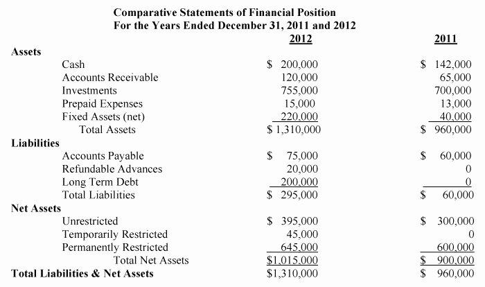 Non Profit Financial Statement Template Inspirational Templates Non Profit Financial Statement Template