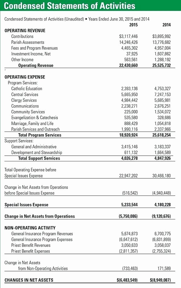 Non Profit Financial Statement Template Lovely Non Profit Financial Statement Template Excel Statement
