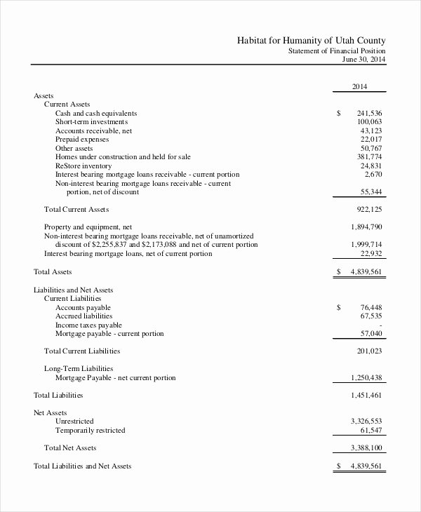 Non Profit Financial Statement Template Lovely Non Profit In E Statement Template Non Profit Financial