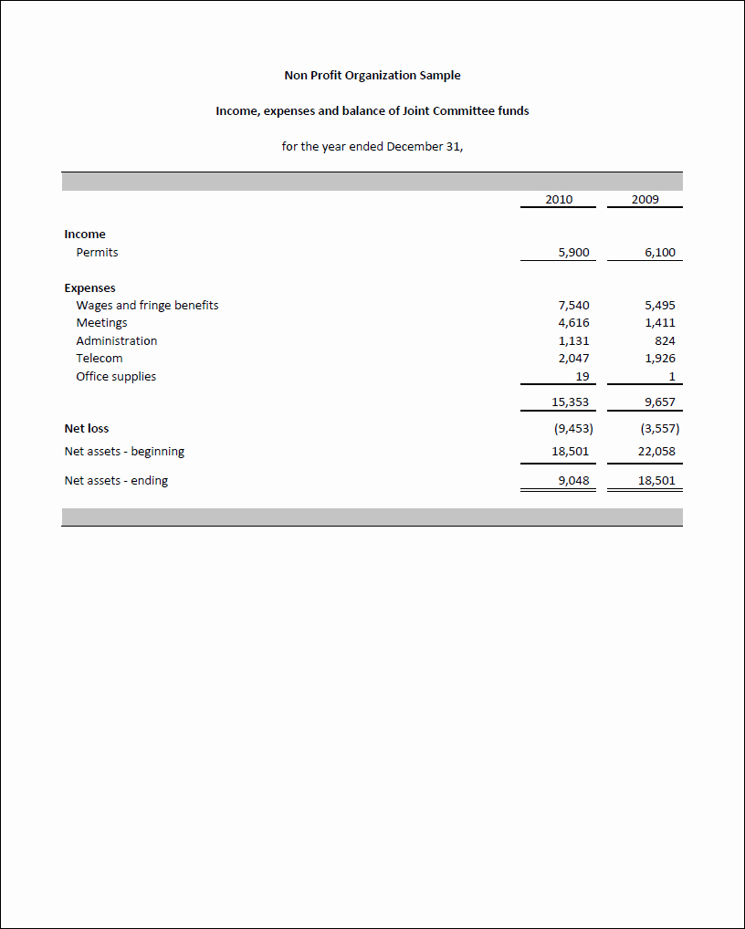 Non Profit Financial Statement Template New Non Profit Financial Statements Example