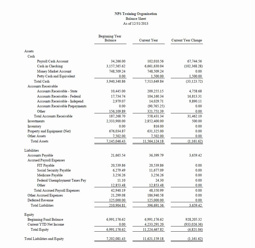 Non Profit Financial Statement Template New Nonprofit Accounting