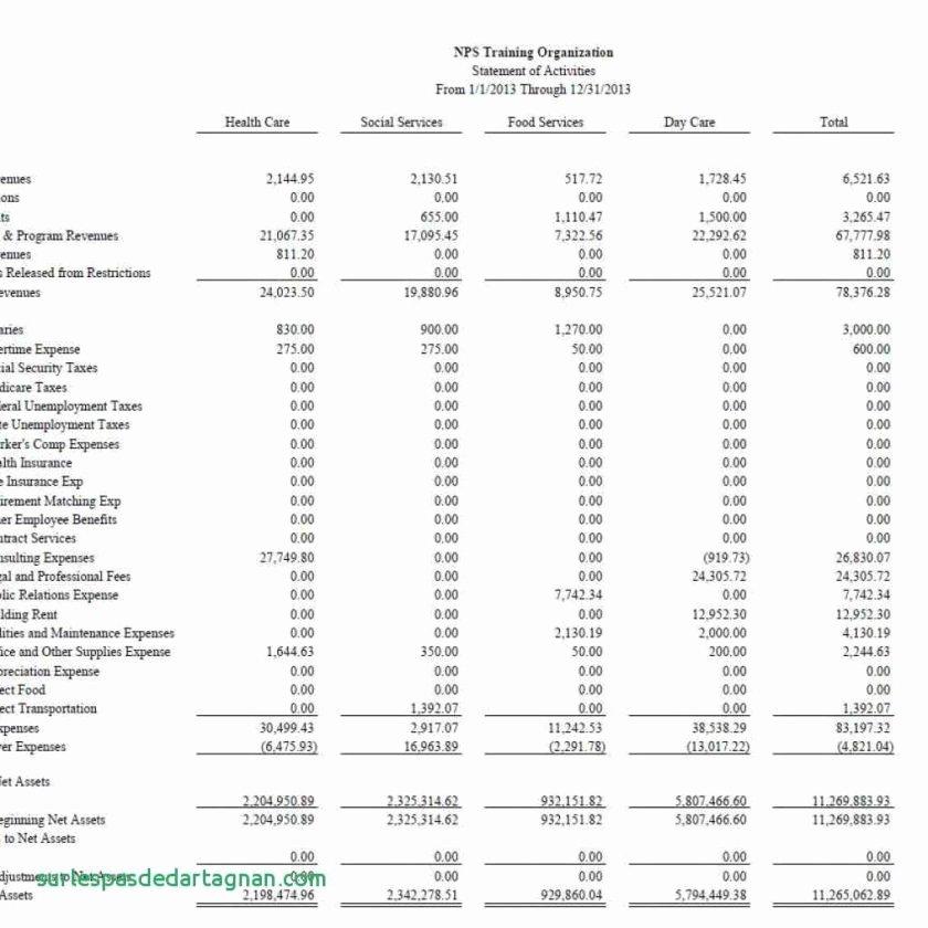 Non Profit Financial Statement Template Unique Non Profit Financial Statements Example Intro to Statement