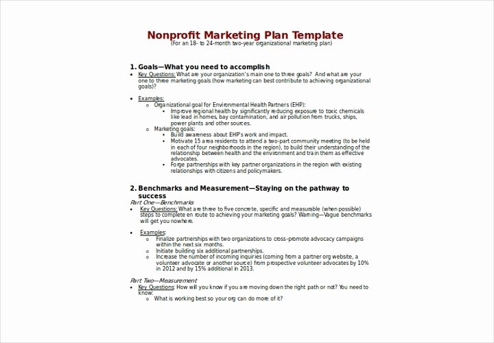 Non Profit Marketing Plan Template Beautiful the Essential Guide to Making A Business Plan