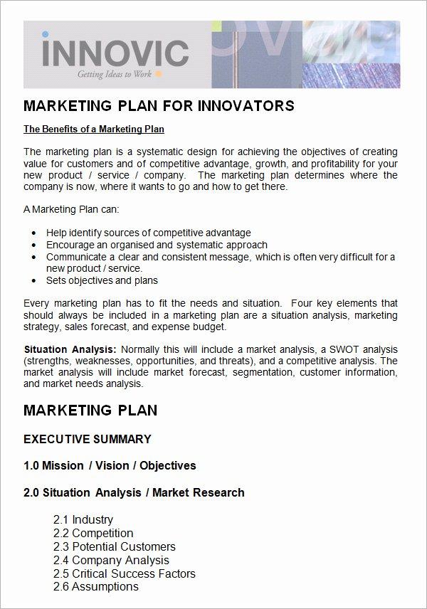 Non Profit Marketing Plan Template Fresh 14 Sample Marketing Plan Templates