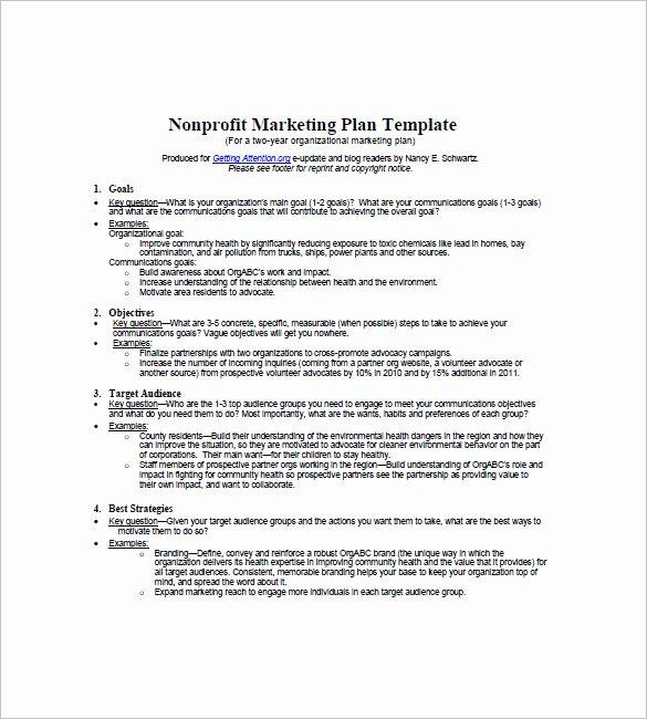 Non Profit Marketing Plan Template Fresh Non Profit Marketing Plan Template – 10 Free Word Excel