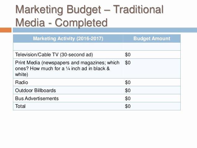 Non Profit Marketing Plan Template Luxury Buss 424 Marketing Plan Non Profit Marketing Plan Template 2