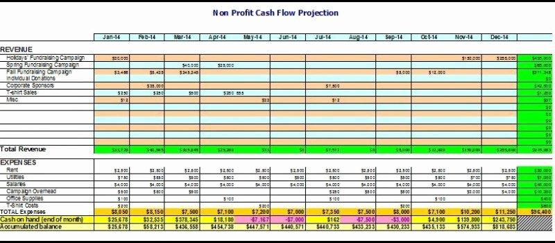 Non Profit organization Budget Template Unique Operating Bud Template Non Profit