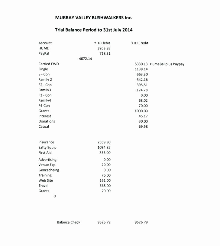 Non Profit Treasurer Report Template Fresh Aa Treasurer Report format Template Professional and High