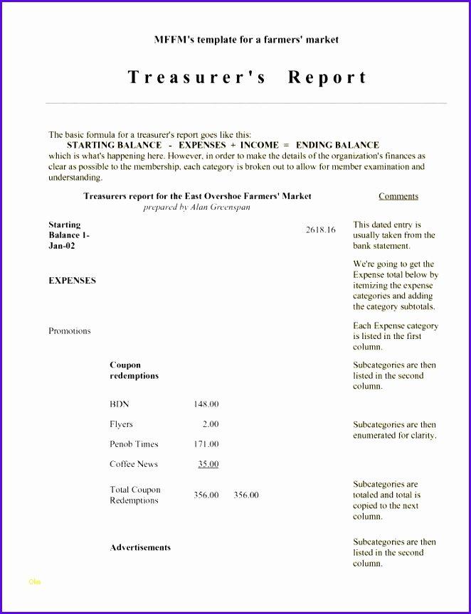Non Profit Treasurer Report Template Lovely Great Non Profit Treasurer Report Template