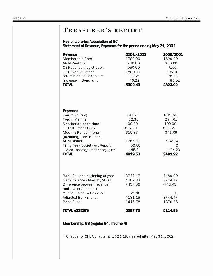 Non Profit Treasurer Report Template Lovely Non Profit Treasurer Report Template Business Treasurers S