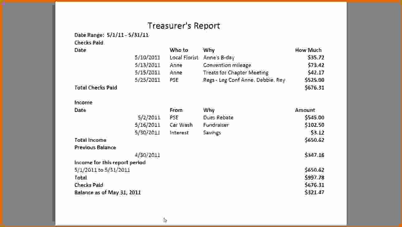 Non Profit Treasurer Report Template Unique 12 Sample Treasurer's Report for Non Profit
