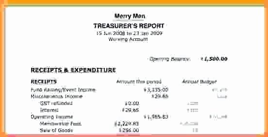 Non Profit Treasurer Report Template Unique Non Profit Treasurer Report Template Business Treasurers S